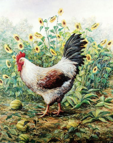 Fine Art Print Country Decor Rooster by Marilyn E. Rea